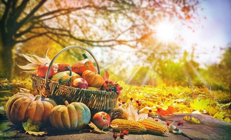 С настъпването на есента е важно да приспособим менюто си