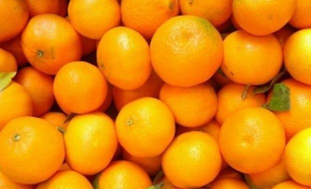 ЕС забрани вреден пестицид, с който се пръскат портокалите и