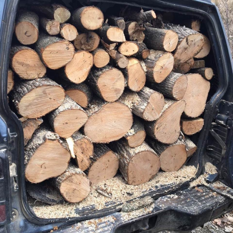 Вчера полицаи от районното управление в Бяла Слатина хванали бракониер