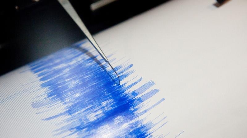 Земетресение с магнитуд 4 бе регистрирано днес край северозападния турски