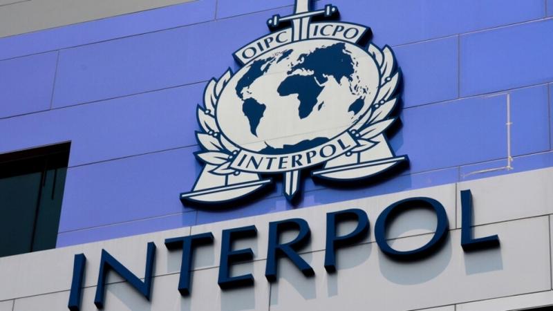 """""""Интерпол"""" откри повече от 12 души, заподозрени в тероризъм по"""