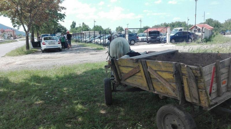 Конфискуваха коня и каруцата на циганин във Враца /снимки/