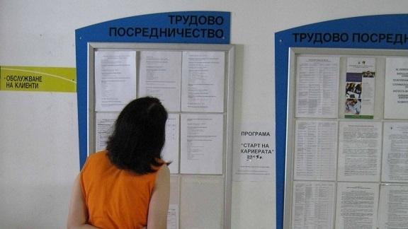 Спад на безработицата в област Видин е отчетен през месец
