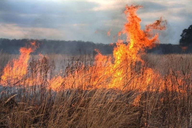 Огнеборци потушили два пожара във Видин и землището на село