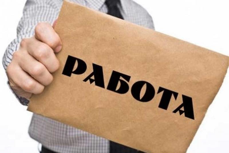 """Регионалните дирекции """"Бюро по труда"""" обявиха свободните работни позиции в"""