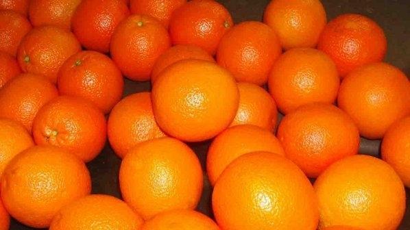 1100 портокала, 70 кафета... Вижте какво количество от любимите ни храни и напитки може да ни убие