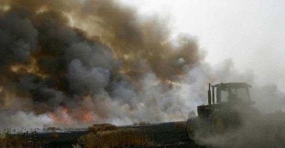Над 10 пожари са гасили огнеборците в област Монтана само