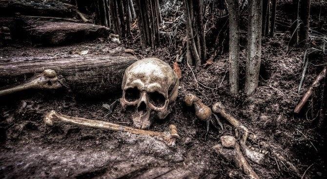 Снимка: Зловеща находка - откриха човешки останки насред околовръстното на Велико Търново