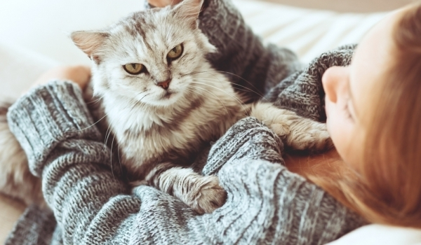 10 безценни съвета от вашата котка