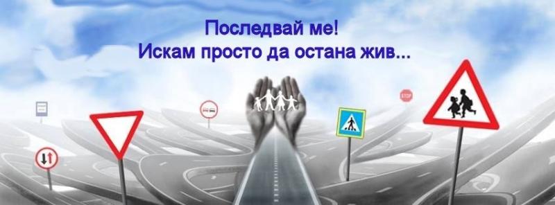 По повод Световния ден за възпоменание на жертвите от пътнотранспортни
