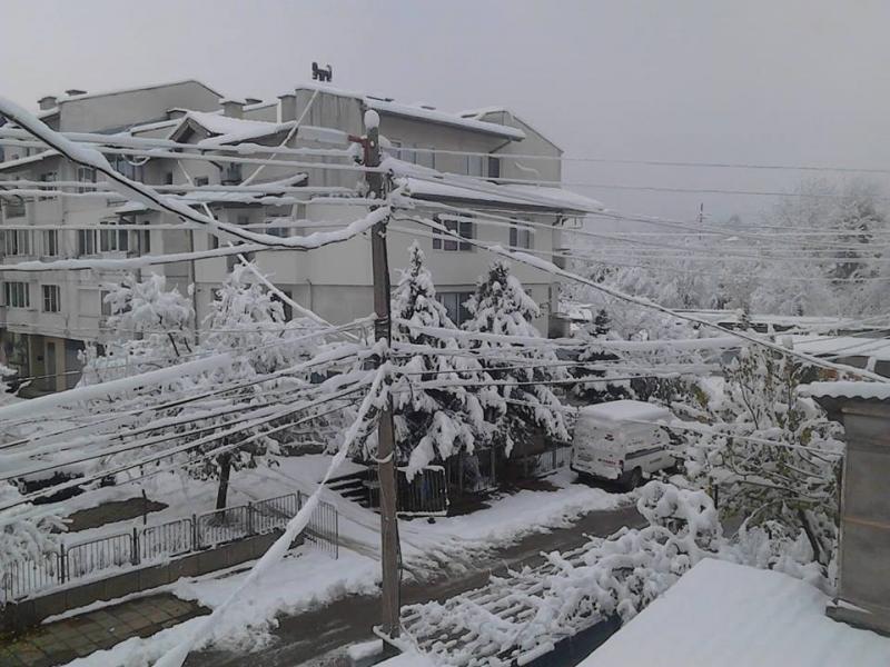 Мокрият сняг, който заваля в неделя вечер в Северозападна България,