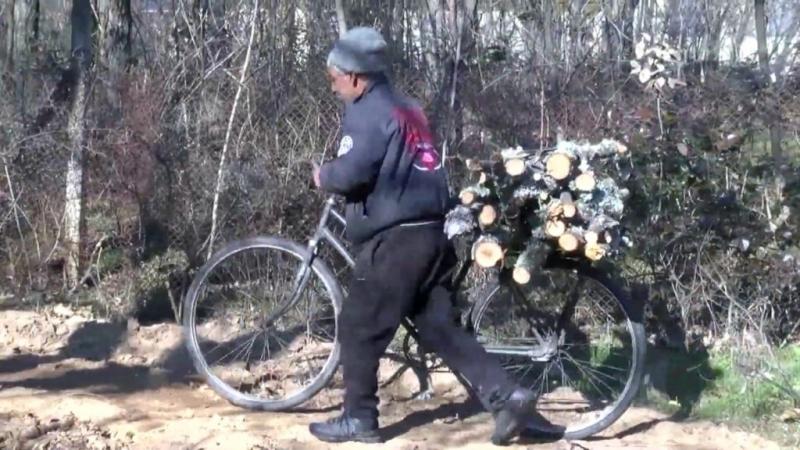 Полицейски служители са хванали мъж, опитал да открадне дърва в