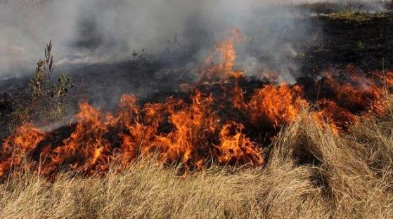 На 4 сигнала за пожари в сухи треви, храсти и