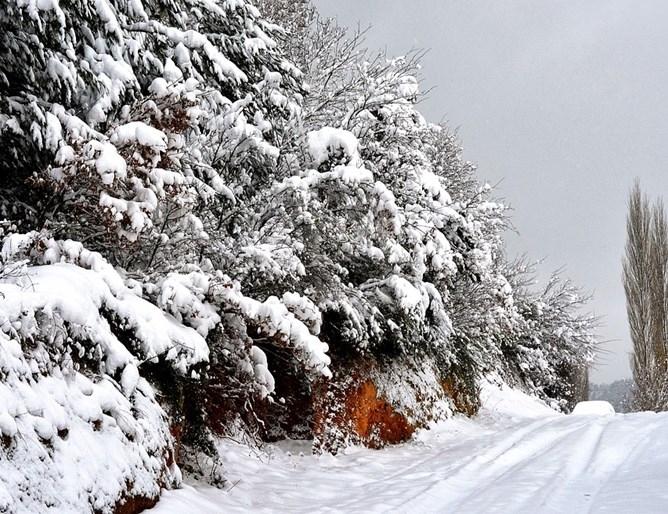 Силният снеговалеж през последните 24 часа остави без ток няколко