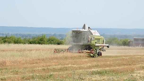 """Приключва жътвата в област Монтана, съобщиха от областна дирекция """"Земеделие""""."""