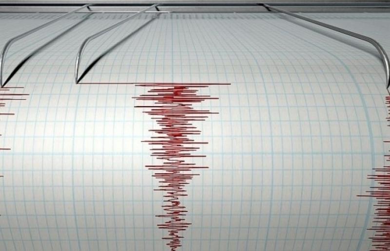 Земетресение с магнитуд от 4 по Рихтер е регистрирано тази