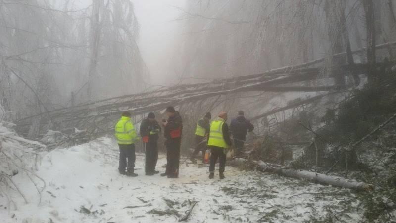 """Адът на """"Петрохан"""" продължава, пожарникари разчистват пътища от паднали дървета и отводняват къщи в Монтанско /снимки/"""