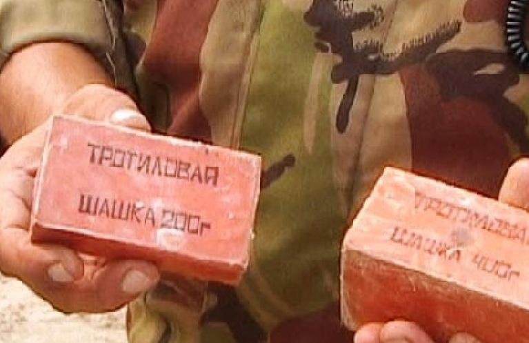 Голямо количество тротил е бил открит в белослатинското село Бъркачево,