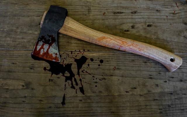 Изплуваха зловещи подробности за бруталното четворно убийство в Нови Искър.По