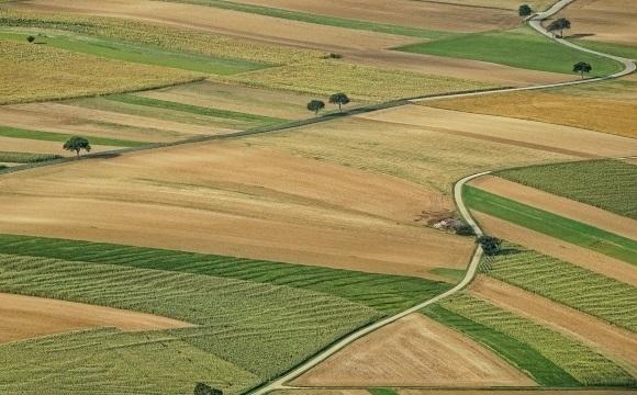 """Най-големият собственик на земеделска земя в България """"Ставен"""" АД вече"""