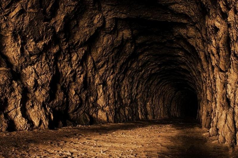 Унгарската полиция съобщи, че е открила два тунела, използвани от