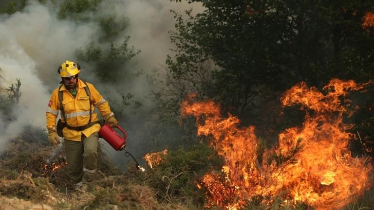 Голям пожар бушува във Видинско, изпепели 70 декара гора
