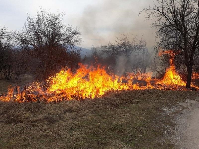Заради непредпазливост: Близо 8 000 дка са oпожарени при 51 пожара в СДП-Враца