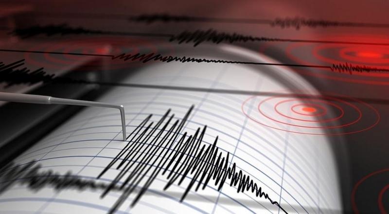 Два последователни силни земни труса разлюляха асоциираната със САЩ островна
