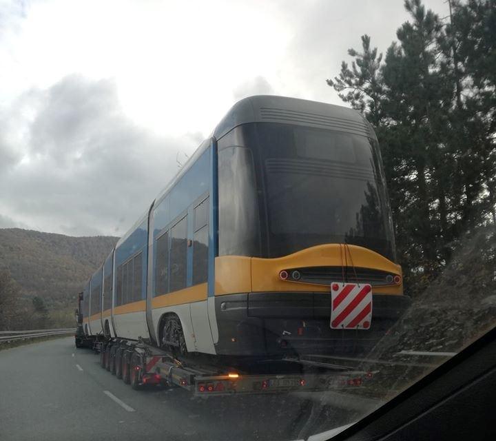 На неочаквана гледка са попаднали шофьорите по пътя от Видин