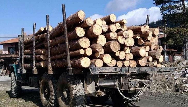 Хванаха бракониер с незаконни дърва в Монтанско