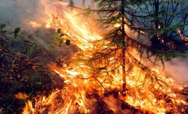 Заради сухото и горещо време висока степен за опасност от