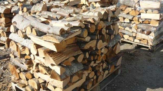 Двама мъже от Криводол са откраднали дървата на други двама