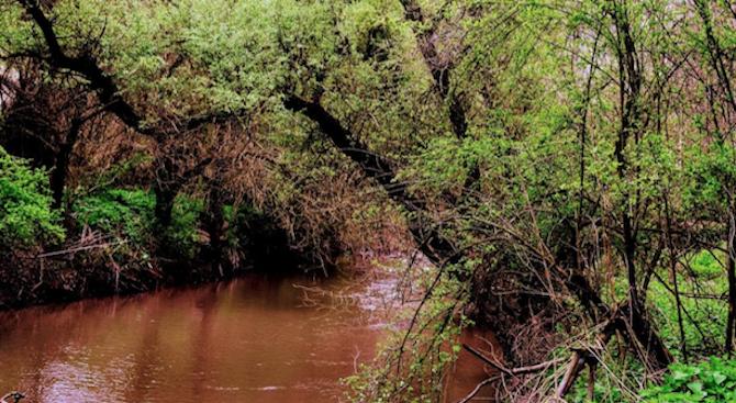 Оцветени водис неприятна миризма се изливат системно в река Русенски