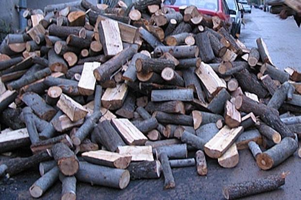 Откриха незаконни дърва в селска къща