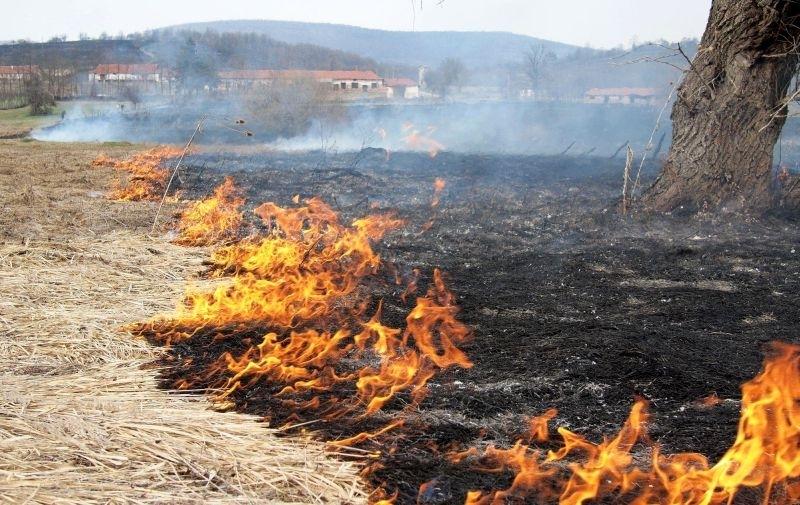 Огнеборците на крак! Близо 20 пожара бушуваха за денонощие в Монтанско