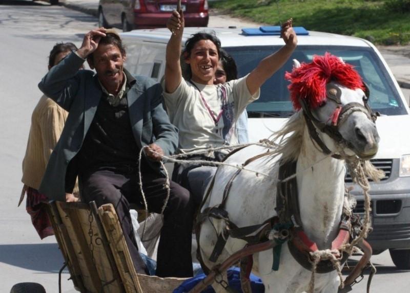 Роми от Монтана са откраднали коня на семейство от Враца,