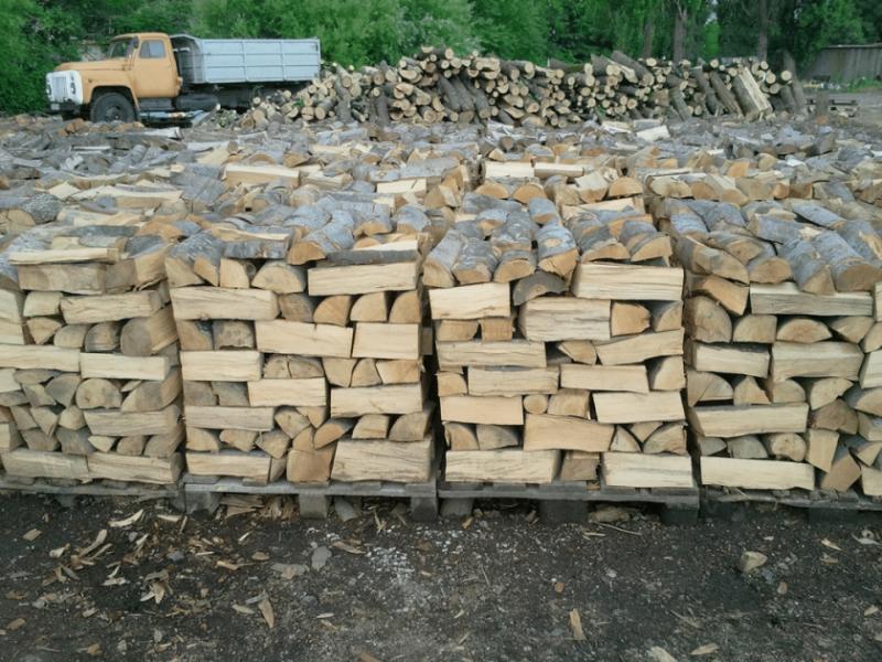 С наближаването на зимата цената на дървата за огрев и