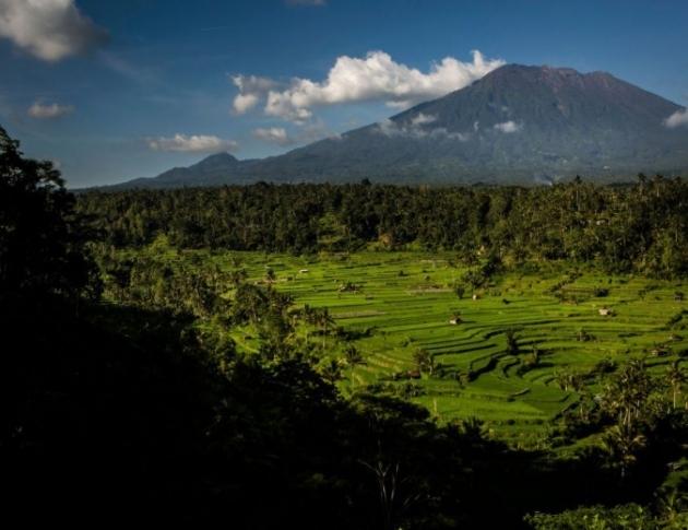 Трус с магнитуд 6,1предизвика паника на остров Бали. Има сгради