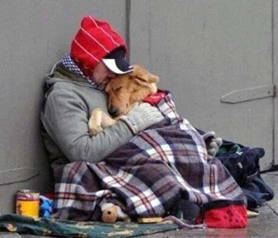 Повече от 780 бездомници кръстосват улиците на страната ни, 500