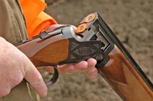 Забраниха лова на птици в Северозапада