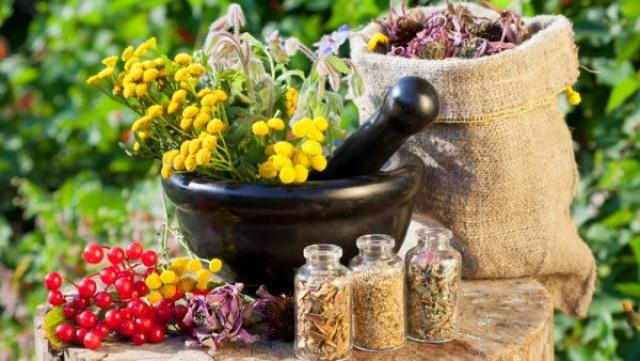 Ето кои са билките срещу болки и възпаления