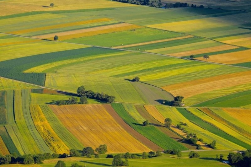 """Снимка: """"Ставен""""АД може да купи вашата земя на най-добра цена и да подготви всички документи"""