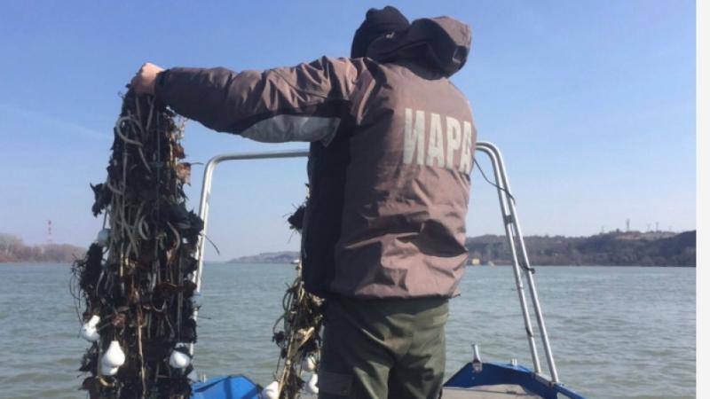 Снимка: Извадиха незаконни кърмаци от река Дунав