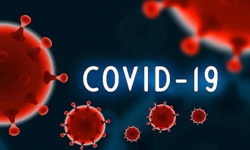 750 са новодиагностицираните с коронавирусна инфекция лица през изминалите 24