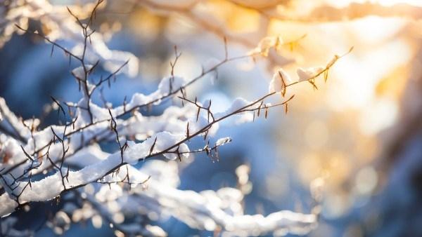Днес (27 януари) времето ще се задържи предимно слънчево и
