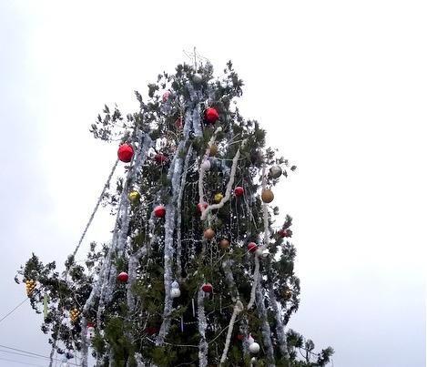 """Светлините на коледната елха на площада пред НЧ """"Цани Иванов"""""""