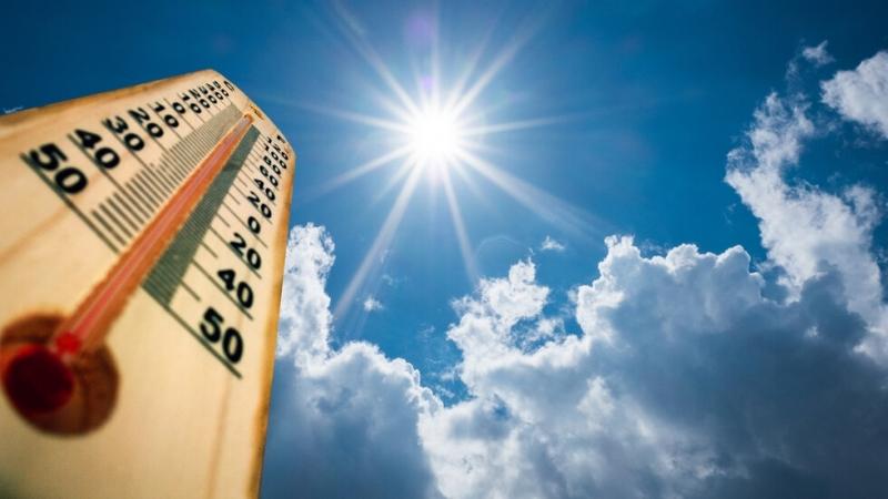 Над 40 градуса ще надхвърлят температурите през месеца, прогнозира Леночка