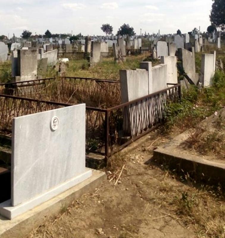 Ужасяващо! Глутница кучета нападнаха и нахапаха врачанин и болната му майка на гробищата /снимки/