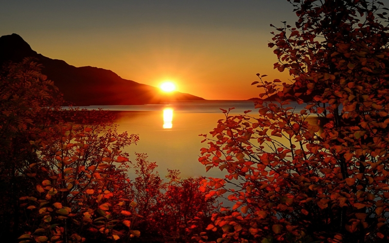 През нощта ще преобладава ясно, а утре отново слънчево време.
