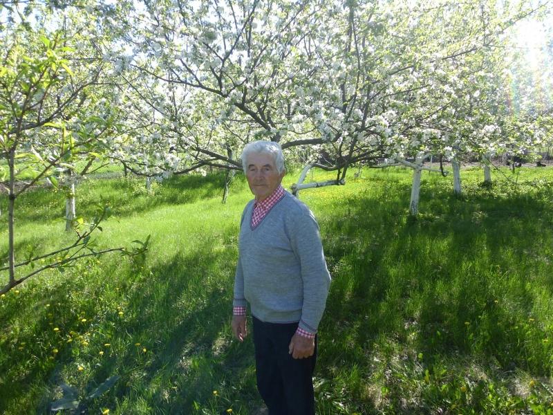 Снимка: Споделяйте! Изчезна дядо от Медковец, близките молят за помощ